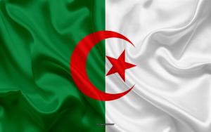 كازينو اون لاين الجزائر